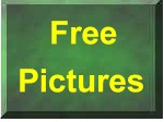 Free Pictures